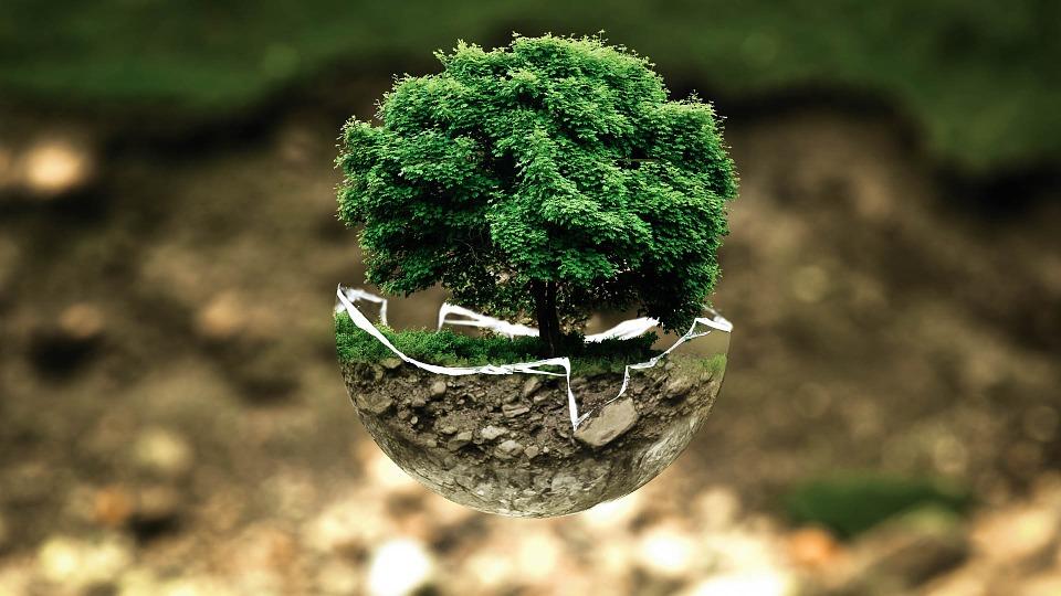 Ekologia ozonowania
